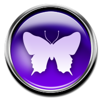 The Butterfly Archetype